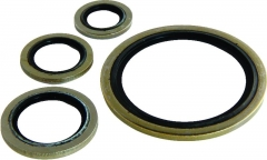 Bonded Seal - Metric - Stainless Steel - Nitrile
