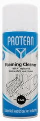 Foaming Cleaner NSF F422 Food Area
