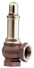 Adjustable Brass/Bronze Spring Safety Relief Valves Capped