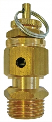 Adjustable Safety Relief Valves 1/8